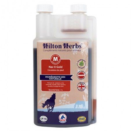 Nav X gold hilton herbs
