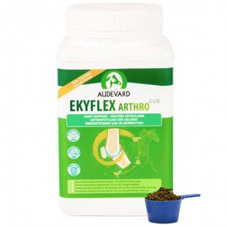 Ekyflex Arthro audevard