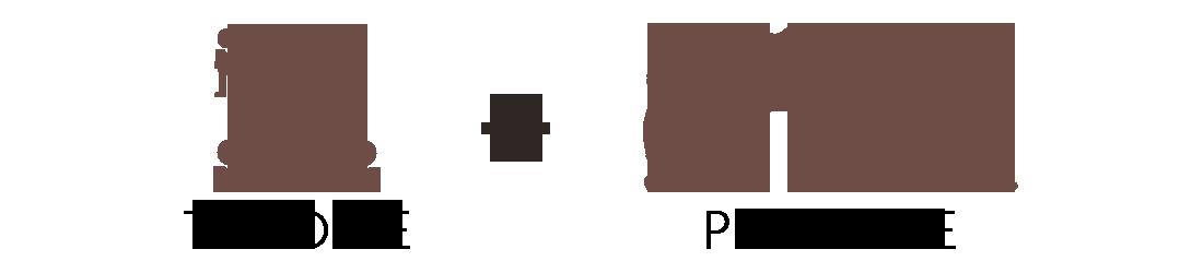 Formation théorique et pratique soin et entretien du cheval - Classequine