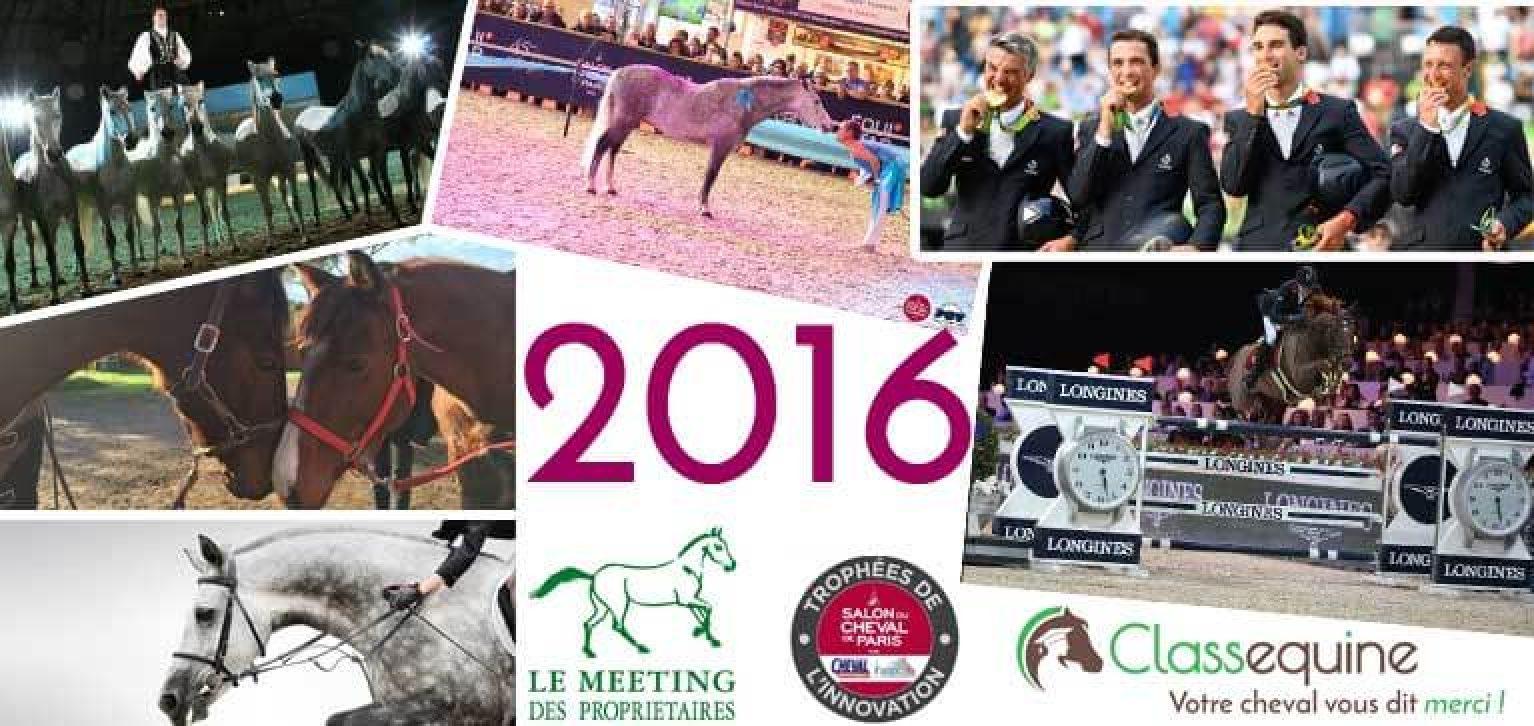retrospective-2016-equitation