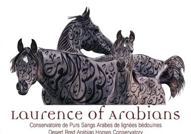 Laurence of Arabians