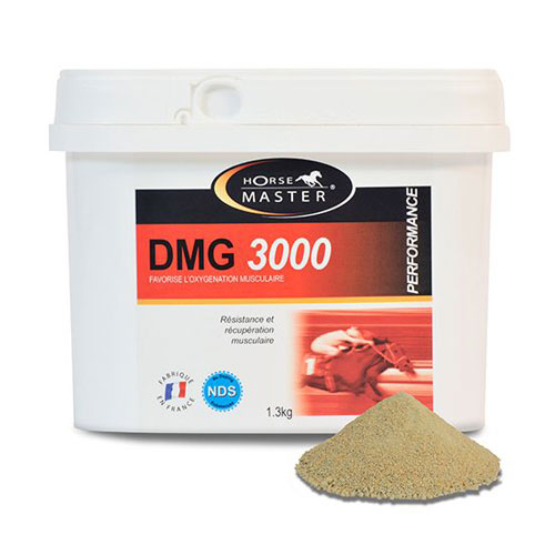 DMG 1500 & 3000 cheval
