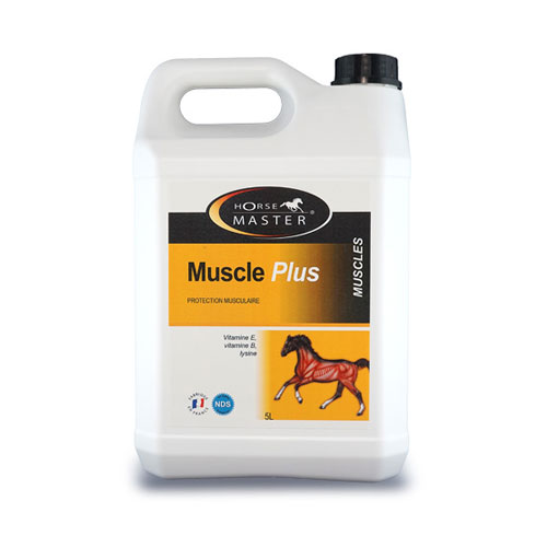 MUSCLE PLUS bidon cheval
