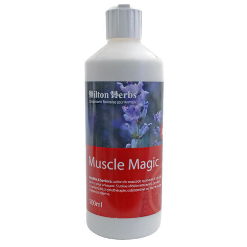 Muscle Magic hilton herbs