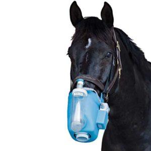 nébulisateur cheval