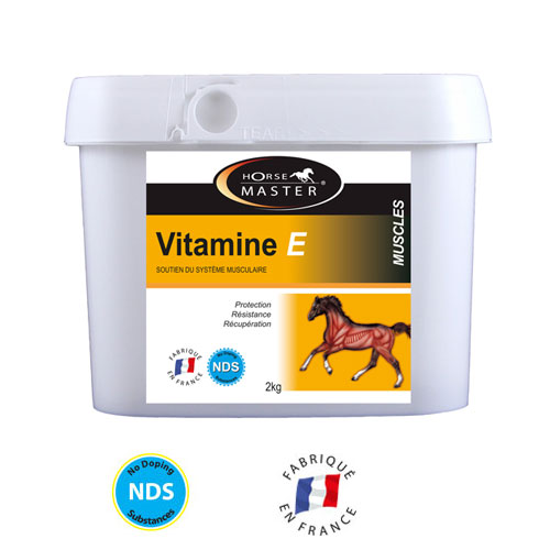 vitamine e cheval