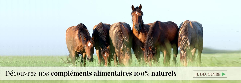 compléments alimentaires naturels cheval