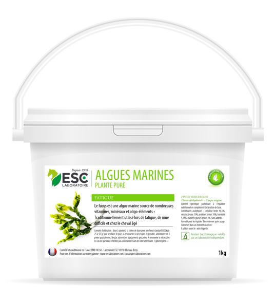 Algues Marines pour Chevaux