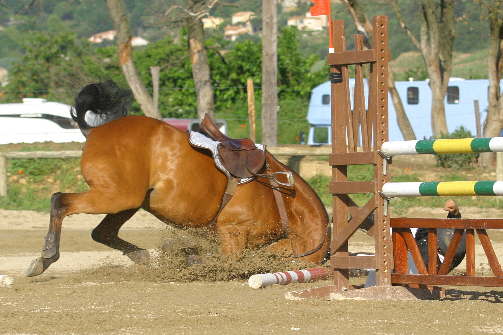 chute cheval